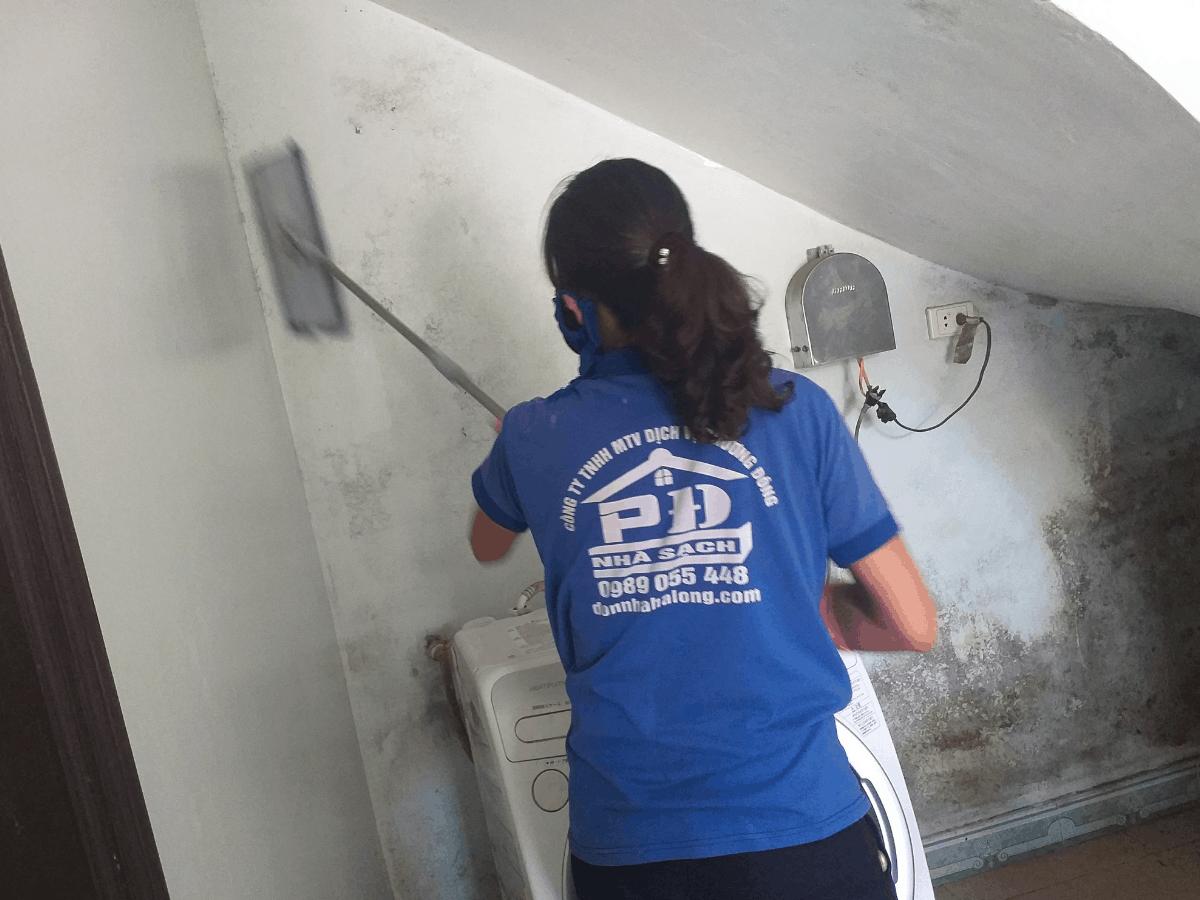 Dịch vụ vệ sinh mốc tường và trần nhà tại Hạ Long